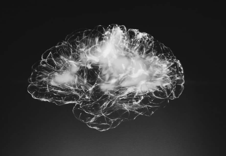 Gehirn Kunstwerk Schizophrenie