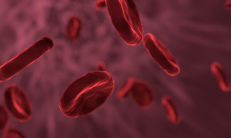 Red blood cells leukemia