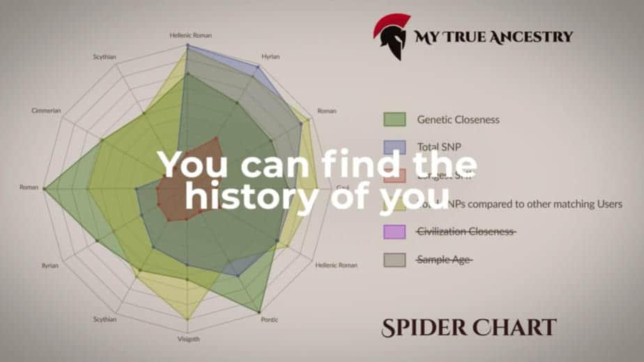 Vista de desglose de ancestros antiguos en los informes de MyTrueAncestry.