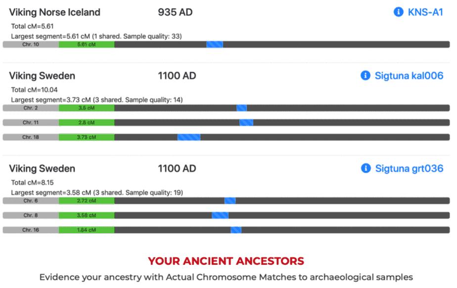 MyTrueAncestry peut différencier les différents types d'ascendance viking.