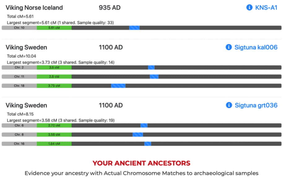 MyTrueAncestry puede diferenciar entre diferentes tipos de ascendencia vikinga.