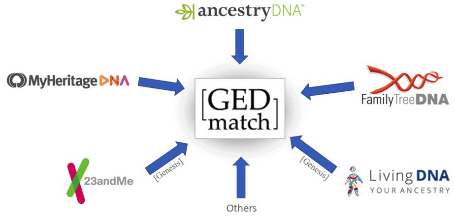 Gedmatch login page