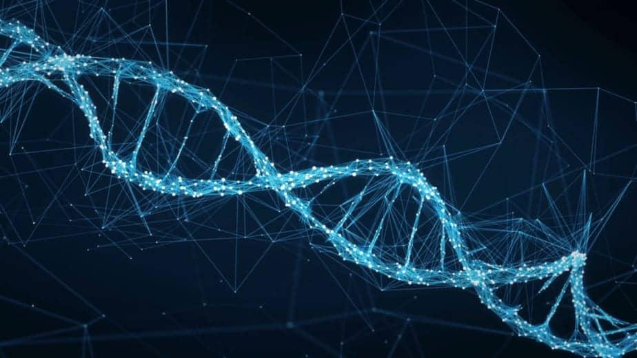 Hélice d'ADN