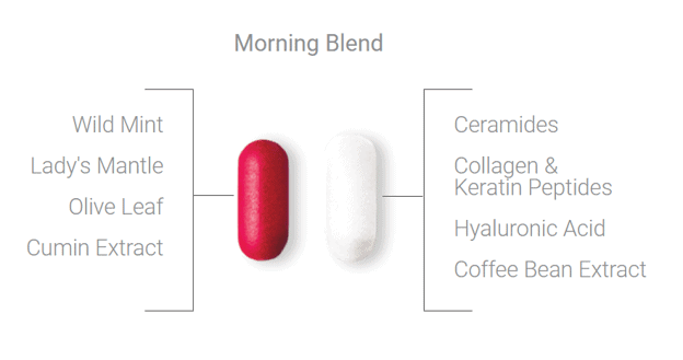 SeroVital morning blend ingredients