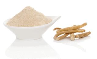 Raíz de Ashwagandha: un ingrediente de Test Boost Max