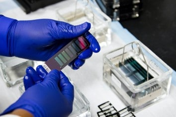 A technician performing DNA testing