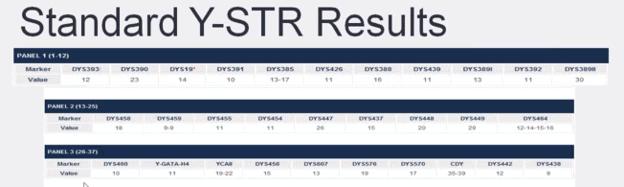 Exemplo de resultados de teste de DNA Y