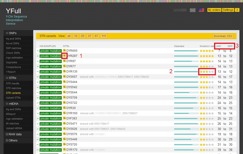 Sample STR variants report from YFull