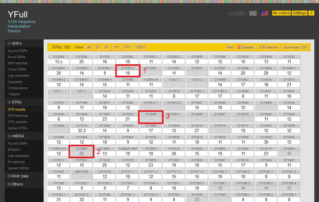 Sample STR results report from YFull