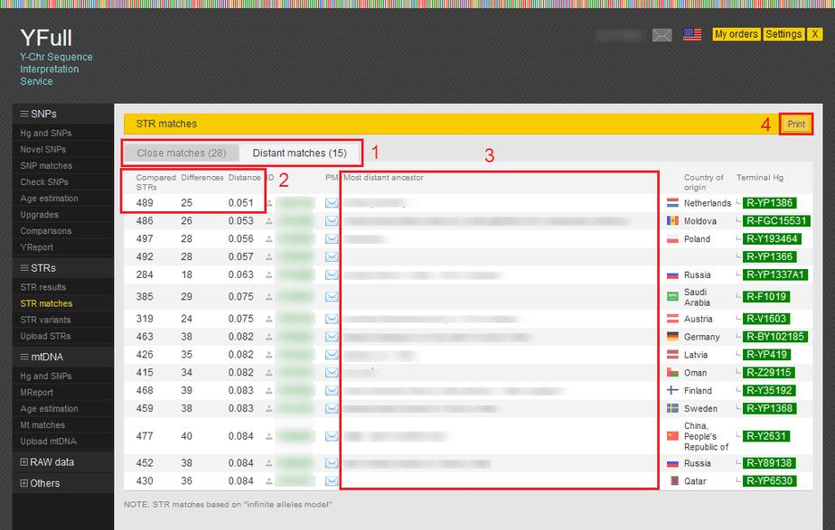 Sample STR matches report from YFull