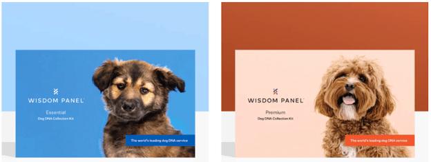 Wisdom Panel options