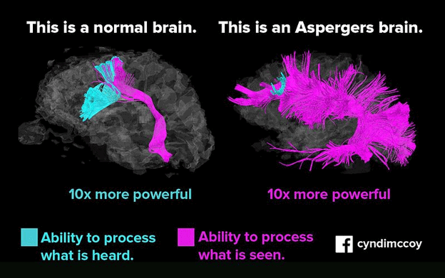 Brain activity comparing the brain of someone with Asperger syndrome and a brain of someone who is neurotypical