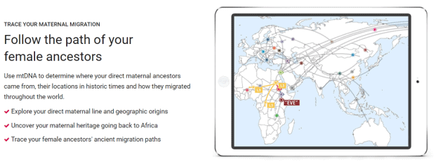 Tracing ancestors through mtDNA tests on FamilyTreeDNA