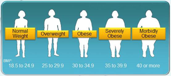 Standard obesity scale
