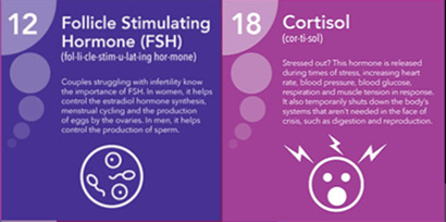 FSH and cortisol - two hormones in a mens health test