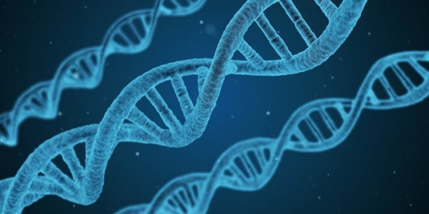 What does DNA stand for? The DNA double helix structure